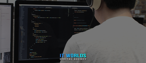 What content can be ordered in our web development company